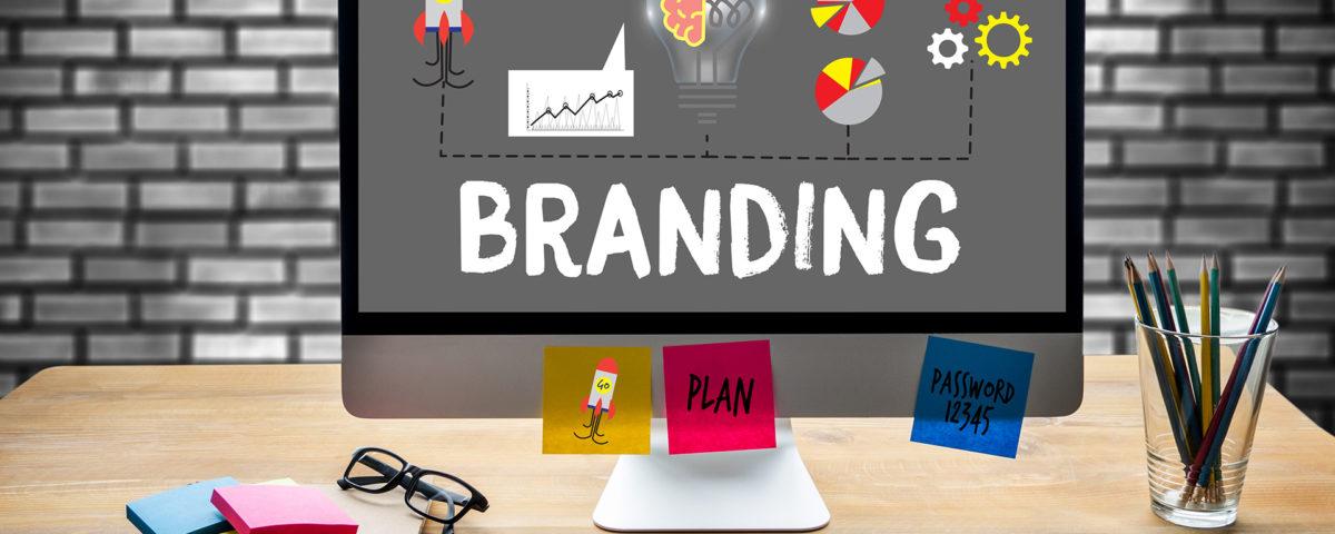 zelfstudie brand management