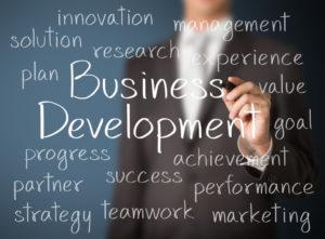 cursus business development