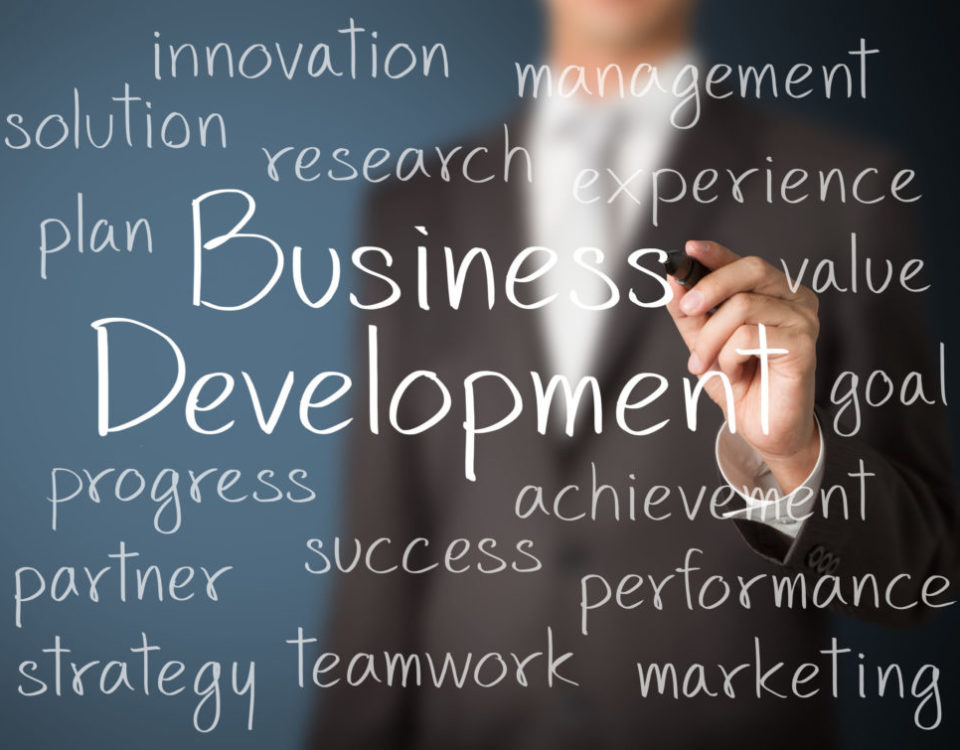 cursus business development
